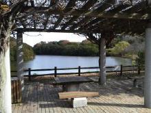兵庫県立淡路島公園 木陰の休憩場