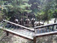 兵庫県立淡路島公園 アスレチック1