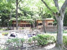 万博公園 森の足湯