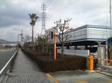 西河原市民プール 駐車場