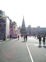 USJ 巨大クリスマスツリー